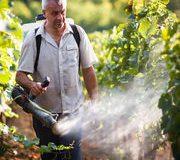 Agriculture biologique: Le cuivre sur la sellette