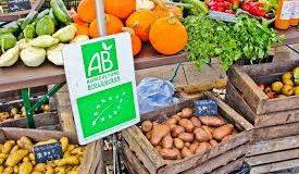 Taux de marge sur les fruits et légumes bio — Les salades de la grande distribution !