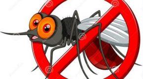 Bien choisir son anti-moustique